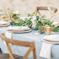 Simple-driftwood-themed-beach-wedding-12