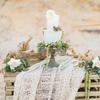 Simple-driftwood-themed-beach-wedding-13